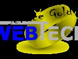 Servicevertag Gold
